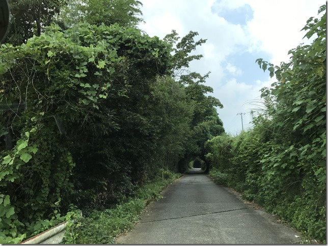 峰自然園_171019_0023