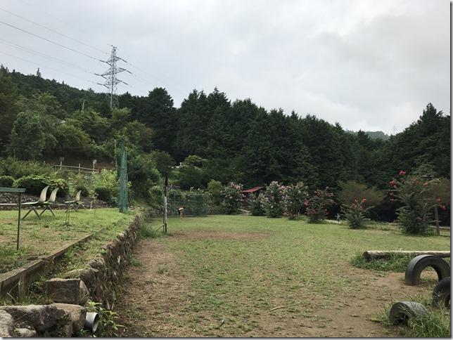 峰自然園_171019_0060